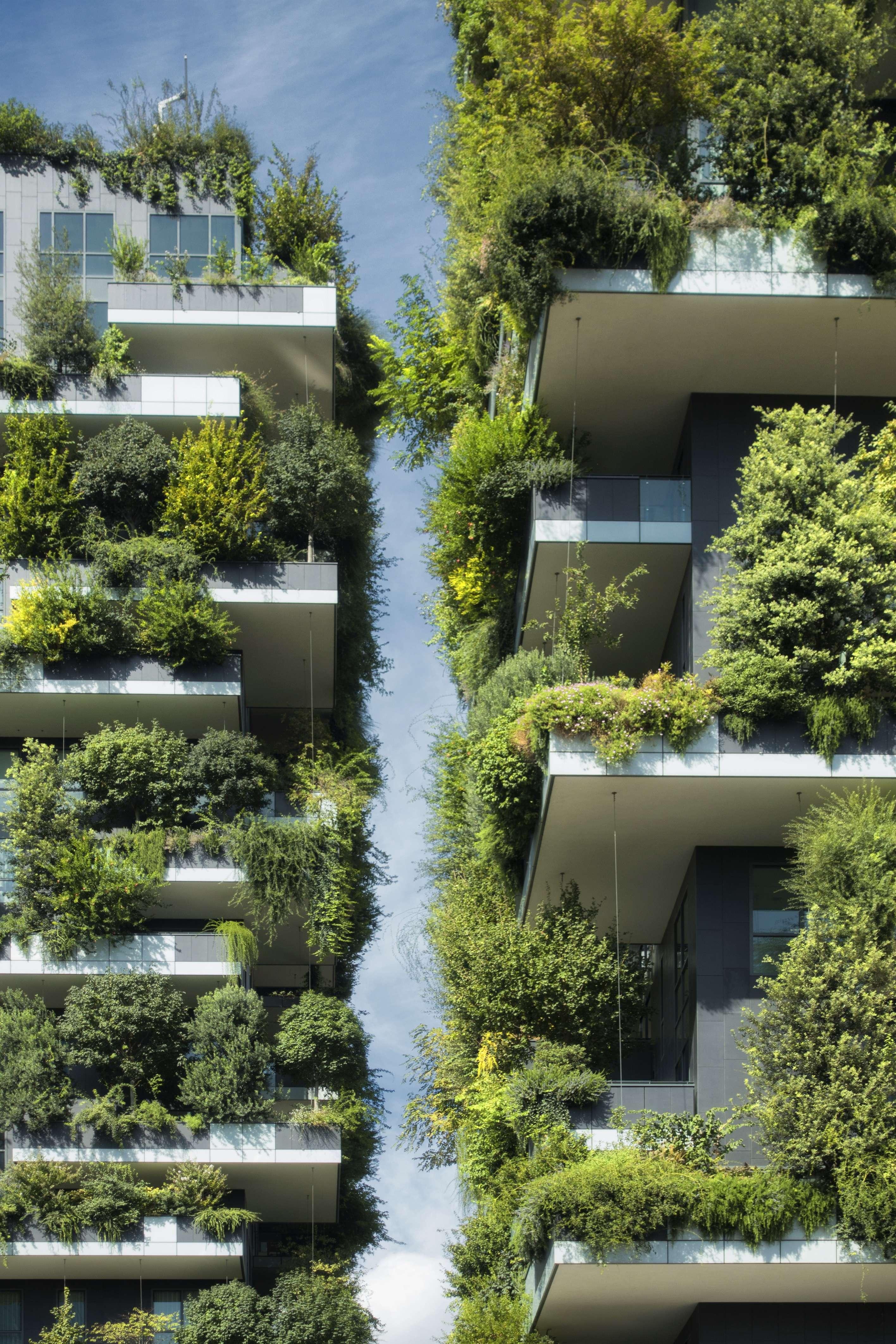 Grünbepflanzung_Balkone