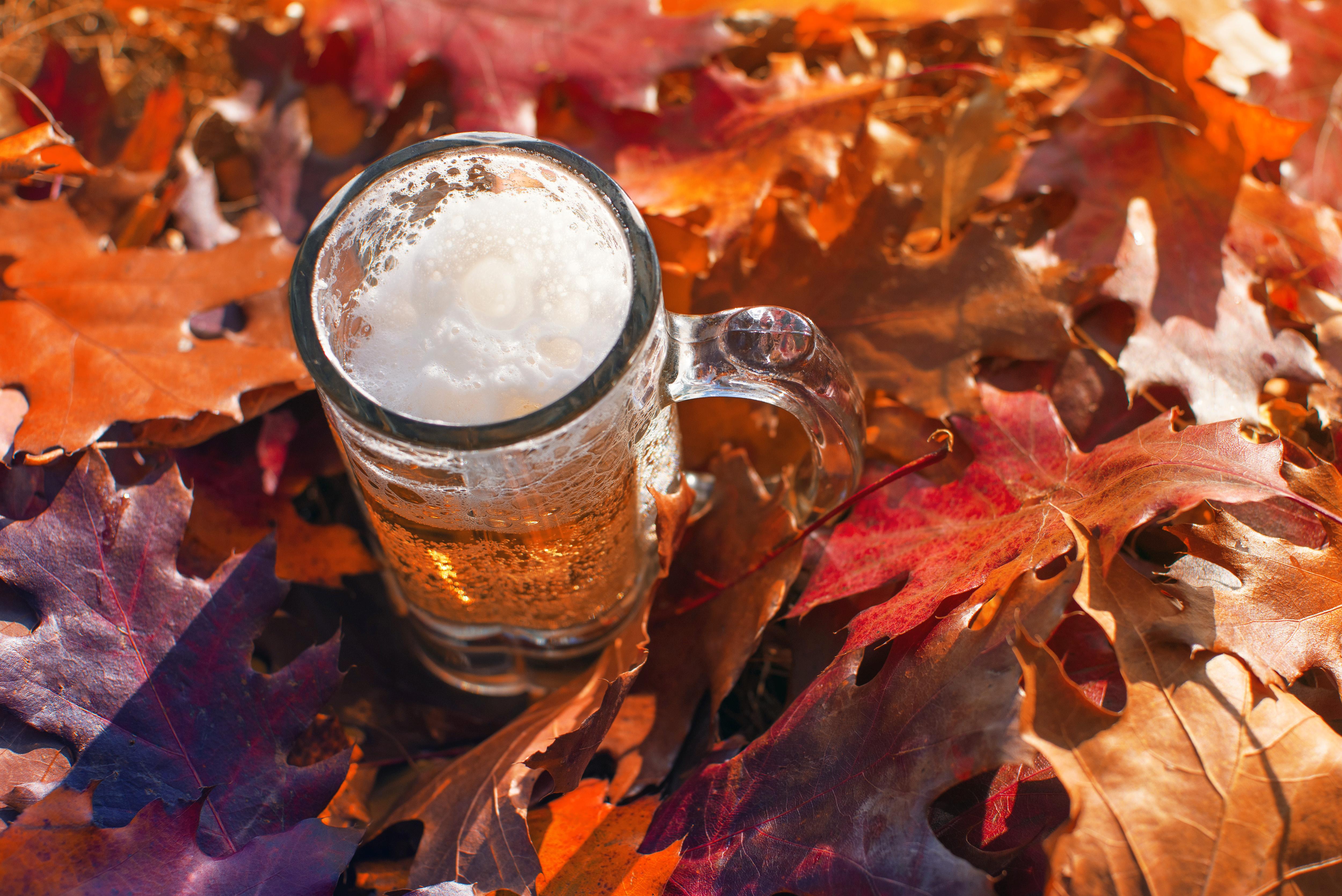 Bierkrug Herbstblätter